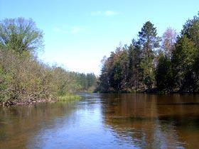 Chippewa Landing Canoe Manistee River
